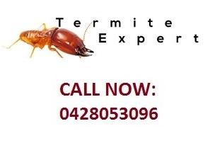 termite control sydney termite inspection